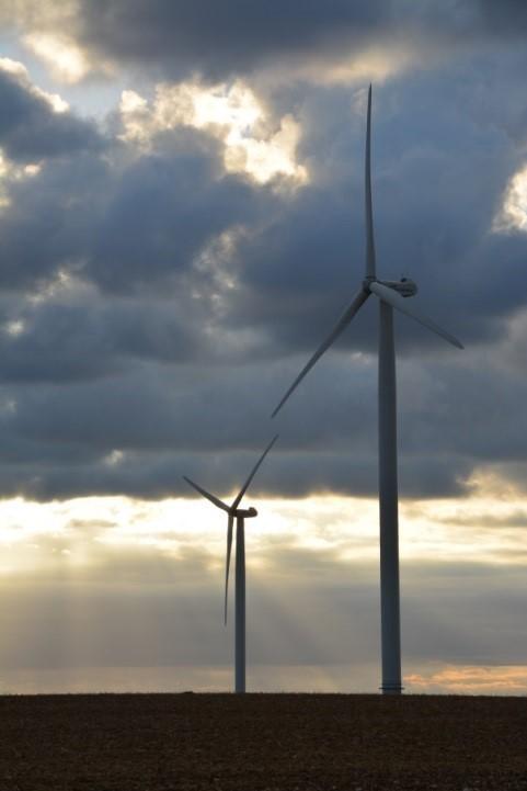 Champ d'éoliennes, Biotope.